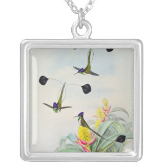 Hummingbird, engraved by Walter and Cohn Necklace