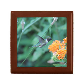 Hummingbird feeding on orange flowers small square gift box