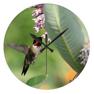 Hummingbird feeding on pink flowers large clock