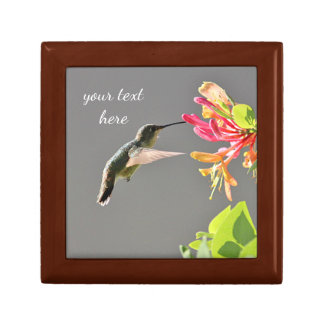 Hummingbird feeding on pink flowers small square gift box