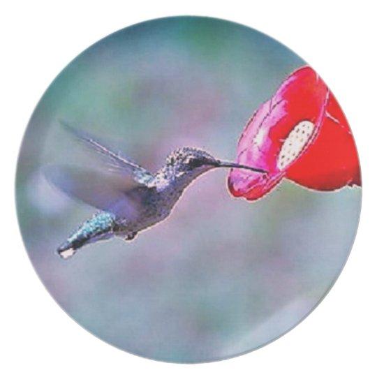 Hummingbird feeding Plate