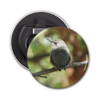 Hummingbird Fledgling Bottle Opener