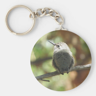 Hummingbird Fledgling Basic Round Button Key Ring