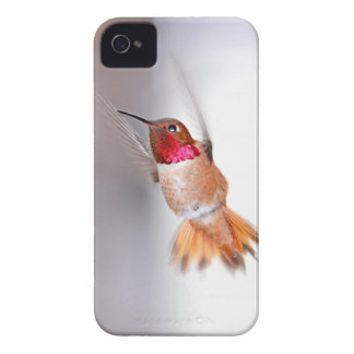 Hummingbird Flying Photo iPhone 4 Cover