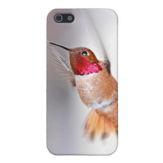 Hummingbird Flying Photo Covers For iPhone 5