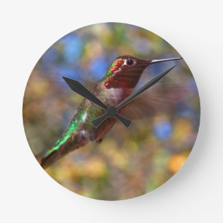 Hummingbird flying wallclocks