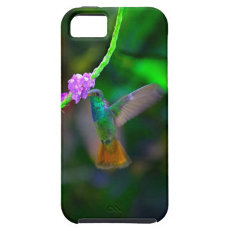 Hummingbird Garden Case For The iPhone 5