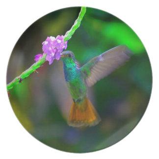 Hummingbird Garden Plate