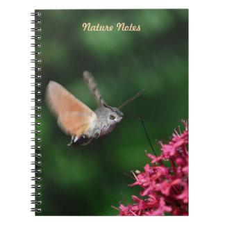 Hummingbird hawk-moth hovering notebook
