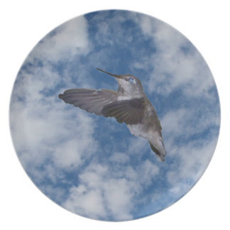 Hummingbird in Blue Sky Party Plate