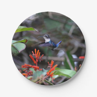 Hummingbird in Flight and Red Flowers Paper Plate