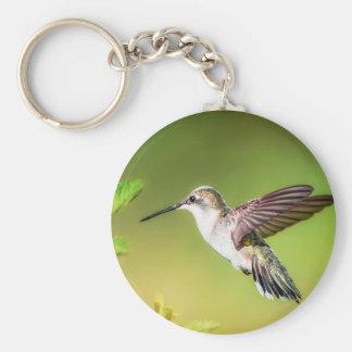 Hummingbird in flight basic round button key ring