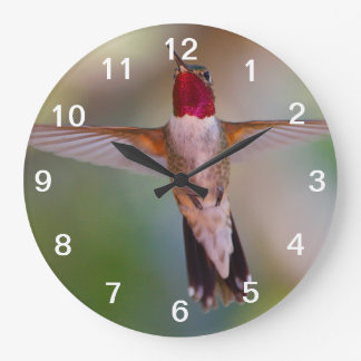 hummingbird in flight clock