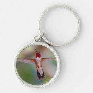 hummingbird in flight key chains