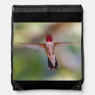 hummingbird in flight backpack