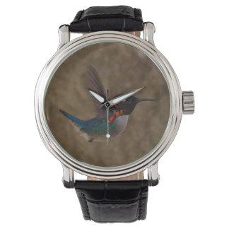 Hummingbird in Flight Watch
