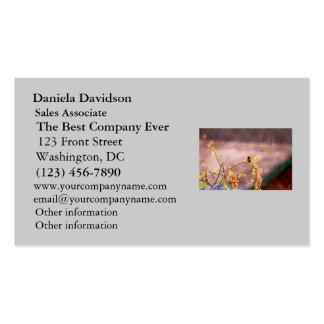Hummingbird in Rain Shower Business Card Templates