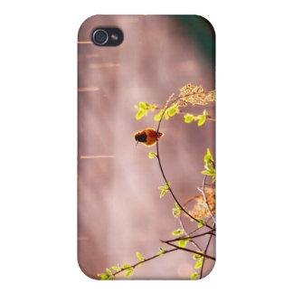 Hummingbird in Rain Shower iPhone 4 Case