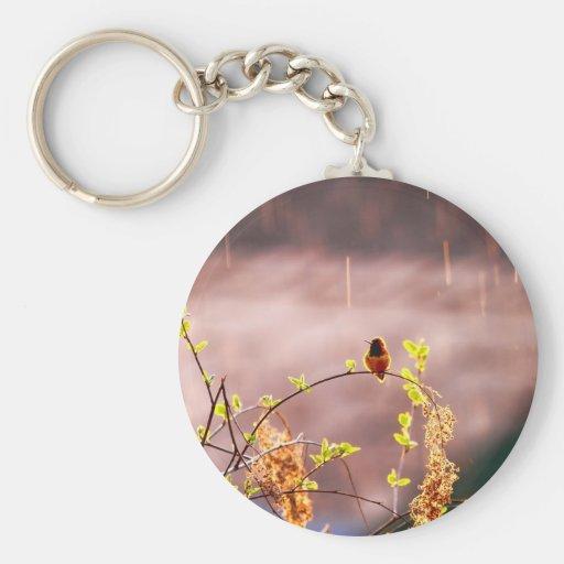 Hummingbird in Rain Shower Keychains