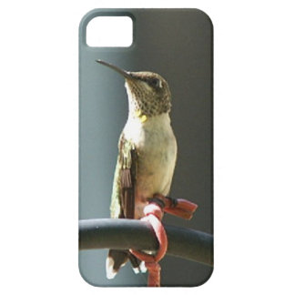 Hummingbird, iPhone 5/6S, Bar4ely There Case. Barely There iPhone 5 Case