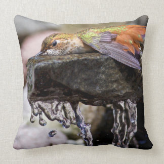 Hummingbird  Laying in Water 2 Cushion