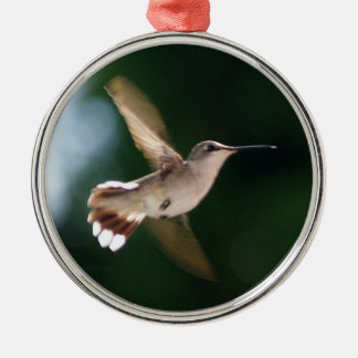 Hummingbird Lover Ornament