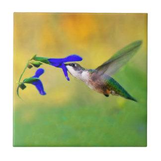 Hummingbird Lunch Tile