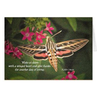 Hummingbird Moth card