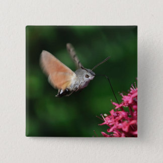Hummingbird moth hovering 15 cm square badge