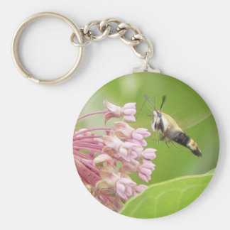 Hummingbird Moth on Milkweed Flowers Basic Round Button Key Ring