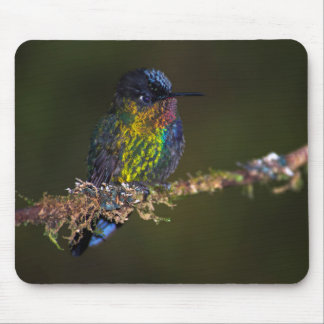 Hummingbird Mouse Mat