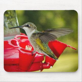 Hummingbird Mouse Mat