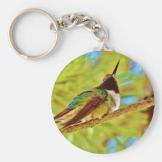 Hummingbird on evergreen key chain