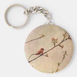 Hummingbird on Flowering Cherry Tree Basic Round Button Key Ring