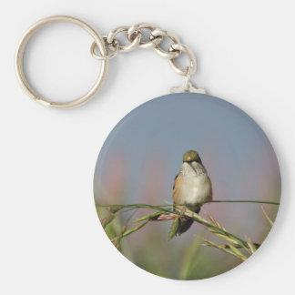 hummingbird on grass keychains