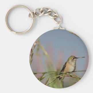 hummingbird on grass key chain