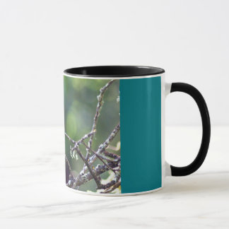 Hummingbird original art photo mug