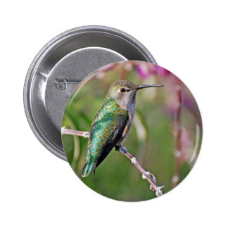 Hummingbird Perch II Pinback Button