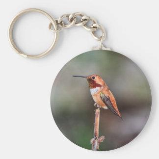 Hummingbird Photo Basic Round Button Key Ring