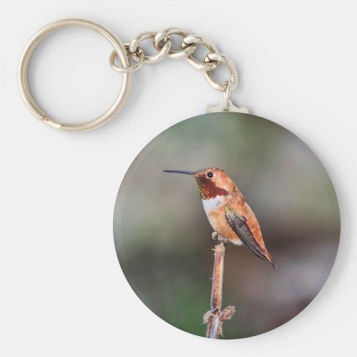 Hummingbird Photo Keychains