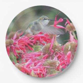 Hummingbird Photo Paper Plate