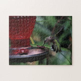 Hummingbird, Photo Puzzle. Jigsaw Puzzle