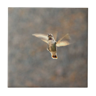 Hummingbird photo tile! tile