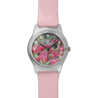 Hummingbird Photo Watch