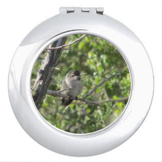 Hummingbird Makeup Mirrors