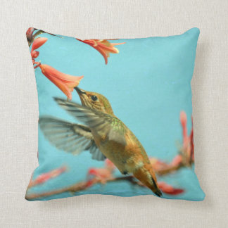 Hummingbird Pillow