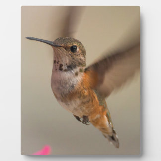 Hummingbird Plaque With Easel