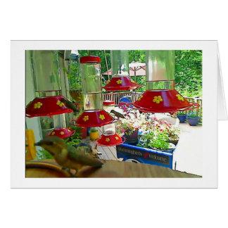 Hummingbird Porch Card
