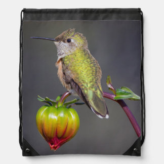 Hummingbird rests on flower bud drawstring bag