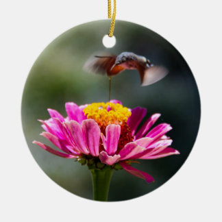 Hummingbird Round Ceramic Decoration